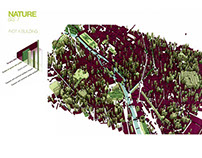 Île - PFP - Site Analisis