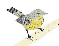 Warbler Print