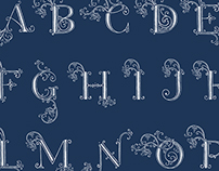 Anthropologie Holiday 2014 Drop Cap Alphabet
