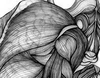 Anatomy Metamorphosis