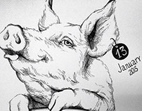 Sketchbook / Black and white pig