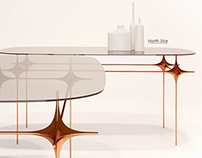 """North Star"" table"