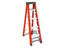Riged Ladder