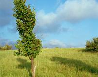 Tifft Farm Nature Preserve