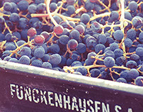 Funckenhausen Vineyards