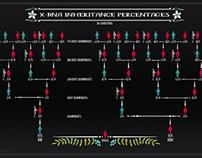 X-DNA Inheritance Chart