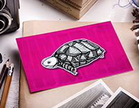 Turtle Cards