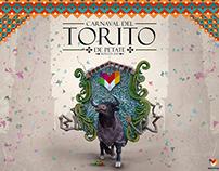 Carnalval del Torito de Petate Morelia 2015