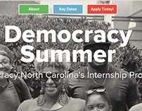 Democracy Summer website redeisgn
