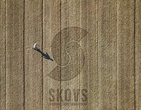 Skovs - Corporate identity