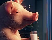 Pig at home