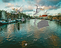 cracked amsterdam