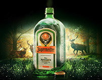 Jager in the forest.