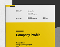 Annual Report and Company Profile - Tycoon Series