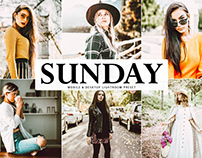 Free Sunday Mobile & Desktop Lightroom Preset