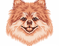 Pomeranian Illustration for GoldenDoodleGoods™