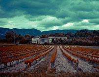 A Provence Tale