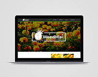 Web Design Weedmai !!!