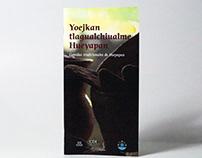 Yoejkan tlagualchiualme Hueyapan Comidas tradicionales
