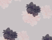Digital painting + pattern studies