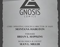 America's Kingdom Comic Book Design & Layout
