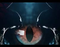 Adidas Predator Evolution Directors Cut