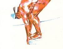 """The Swimmer"" illustrations"