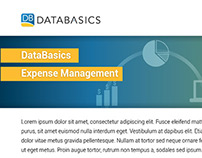 Databasics Datasheet template