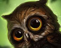 Owl lemur