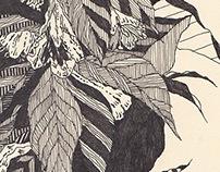 植物 線画・模様化