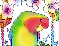 I love lovebird