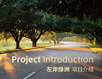 Project introduction Ⅲ