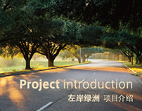 Project introduction ‖