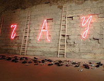 Инсталляция в Лувре для Игоря Макаревича