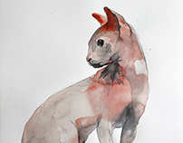 Sphynx Cat Series, 2014-2015.