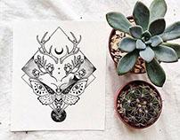 Ilustraciones para El Armario