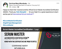 Scrum Institute - Official Certified Scrum Programs