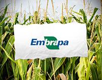 Embrapa E-Rastrear Microsite