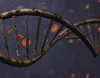 DNA VIDEOHIVE PROJECT