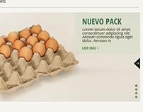Sanovo Greenpack Argentina - Website Mockup 2014