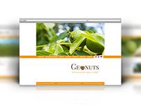 Geonuts / Web