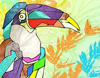 Organic Textures Collage