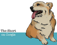 Corgi Book - Communication Design 2