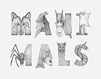 Maxim Magazine, Manimals Lettering