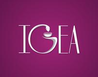 Logotype  IGEA