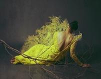 Of Desolate Amber