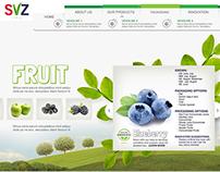 SVZ Website