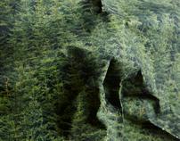 Untitled Landscapes, Krajiny Bez názvů, 2011
