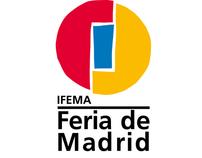 IFEMA, Diseño Institucional