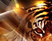 TigerSpirit